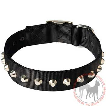 Nylon dog collar for demonstrational walking