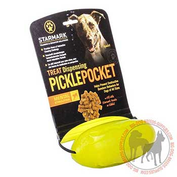 Canine Treat Dispenser for Chewing