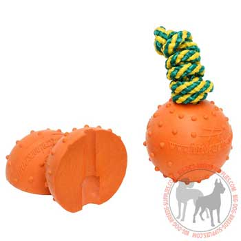 Dog rubber toy for water games