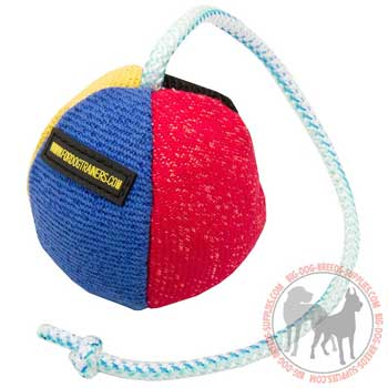Training ball for dog high quality nylon string