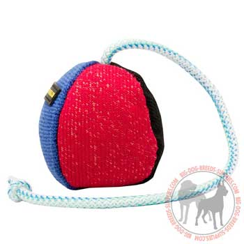 Dog training and plaiying toy on long nylon string