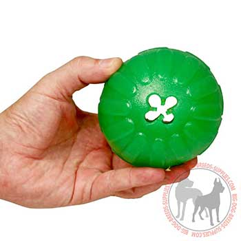 Rubber Dog Toy for Chewing