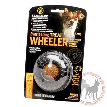 Safe Dog Rubber Treat Holder for Small Dogs