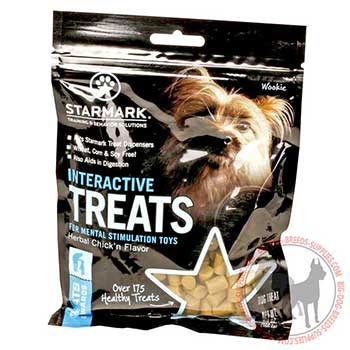 Special Treats for Active Dogs