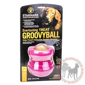 Reliable Dog Rubber Treat Dispenser