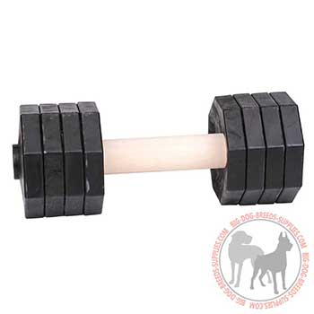 Reliable Training Dumbbell of Wood