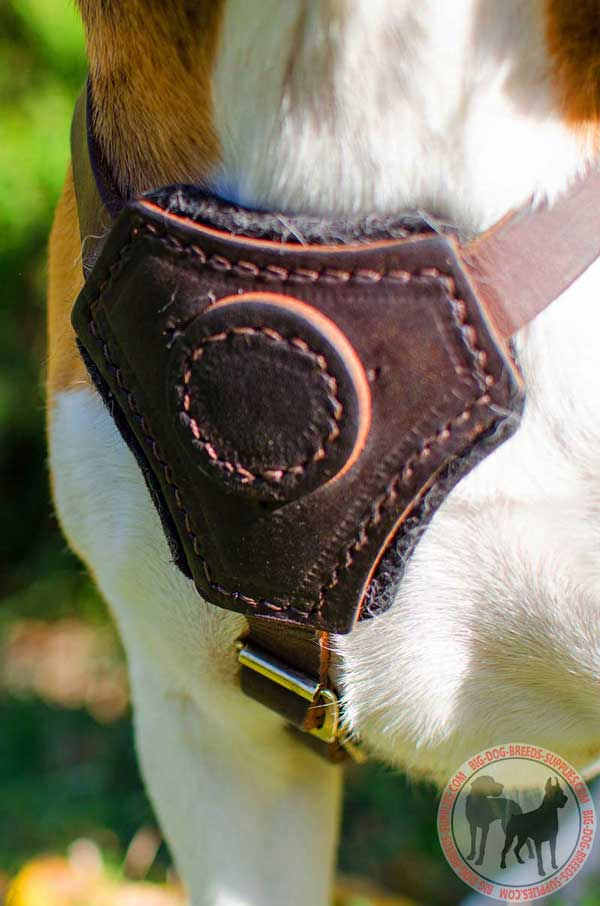 Order Padded Puppy Leather Dog Harness Walking Training