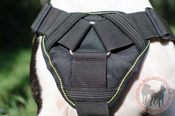 Cushion-like chest plate for training