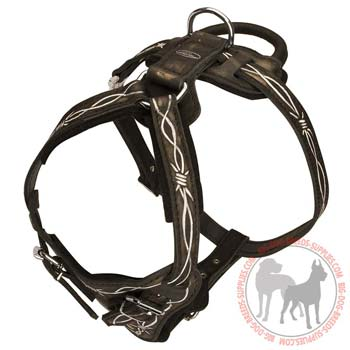 Leather dog harness with easy quick release buckle