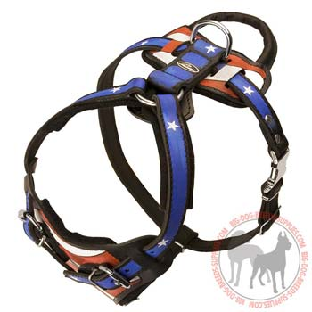 Durable leather handpainted dog harness