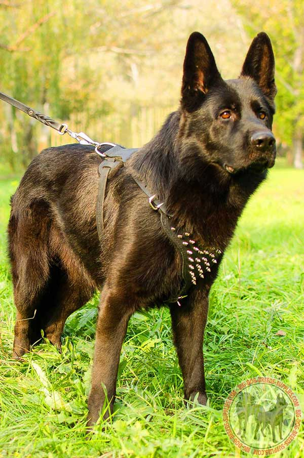 Leather Harness for German Shepherd Fashion Walking