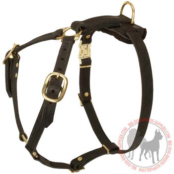 Black Leather Harness for Tracking