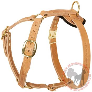 Training Leather Dog Harness