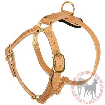 Leather Harness for Dog Tracking