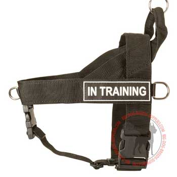 Nylon Harness for Dog Training