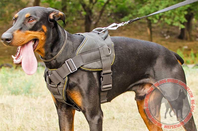 Pulling Tracking Training Walking Nylon Doberman Harness Nylon ...