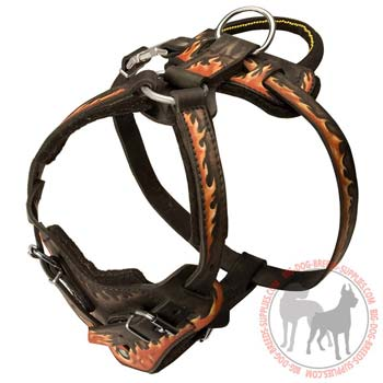 Leather dog harness for aattack training or showy walking