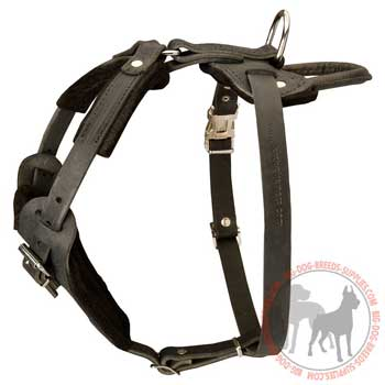 Leather dog harness with easy adjustable straps