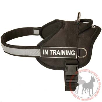 Nylon dog harness lightweight with ID patches