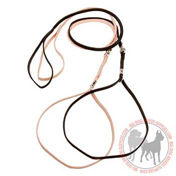 Nylon Dog Lead and Collar Combo