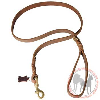 Dog leather leash corrosion resistant hardware
