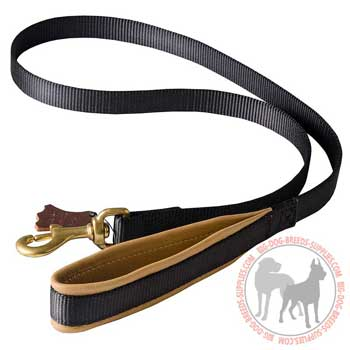 Dog nylon leash with padding on the handle