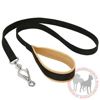 Nylon dog leash with padded handle