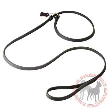 Dog shows leather leash and choke dog collar combo