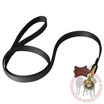 Dog leash nylon heavily stitched for durability