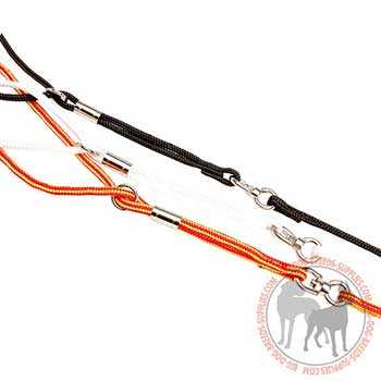 Nylon Dog Leash with Firm Hardware