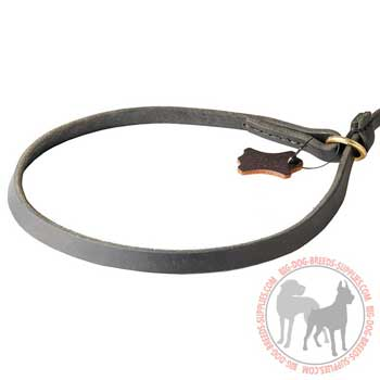 Leather choke dog collar as a part of dog walking leash