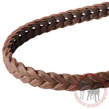 Leather Leash Braid in Brown Color