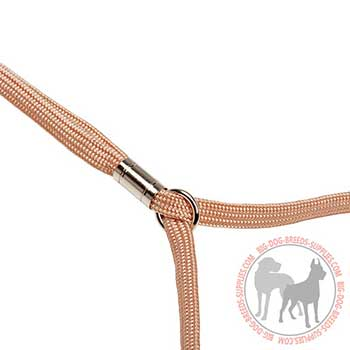 Dog Nylon Leash and Collar with Size Fixer