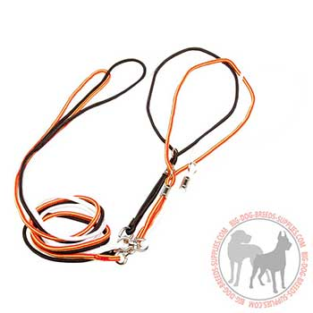 Nylon Dog Leash with Innovative Design