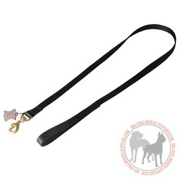 Nylon dog lead weatherproof, practical, strong