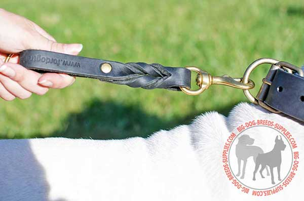 Dog Leash Pull Tab for Proper Management of Large Canine
