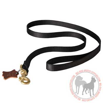 Nylon heavy duty dog leash resistant to tear and wear