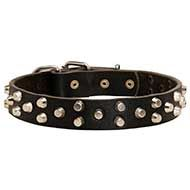 Designer Pyramid Studded Leather Canine Collar