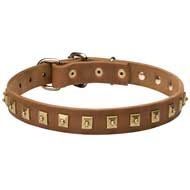 Awesome Leather Canine Collar with 1 Row of Nickel Studs 25 mm wide
