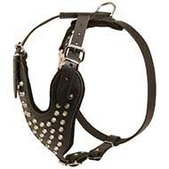 Strong Leather Harness with Nickel Pyramids for Daily Walking