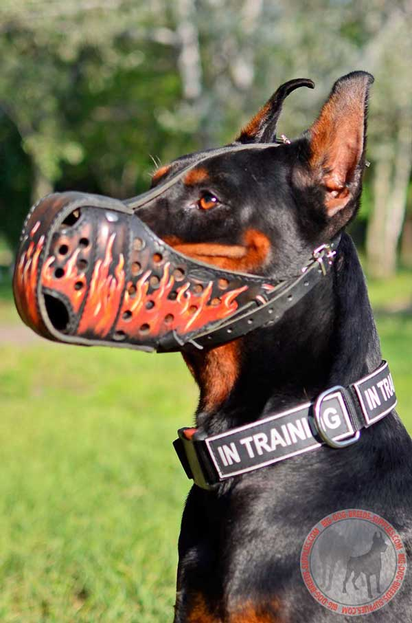 Leather Muzzle for Doberman Free Breathing