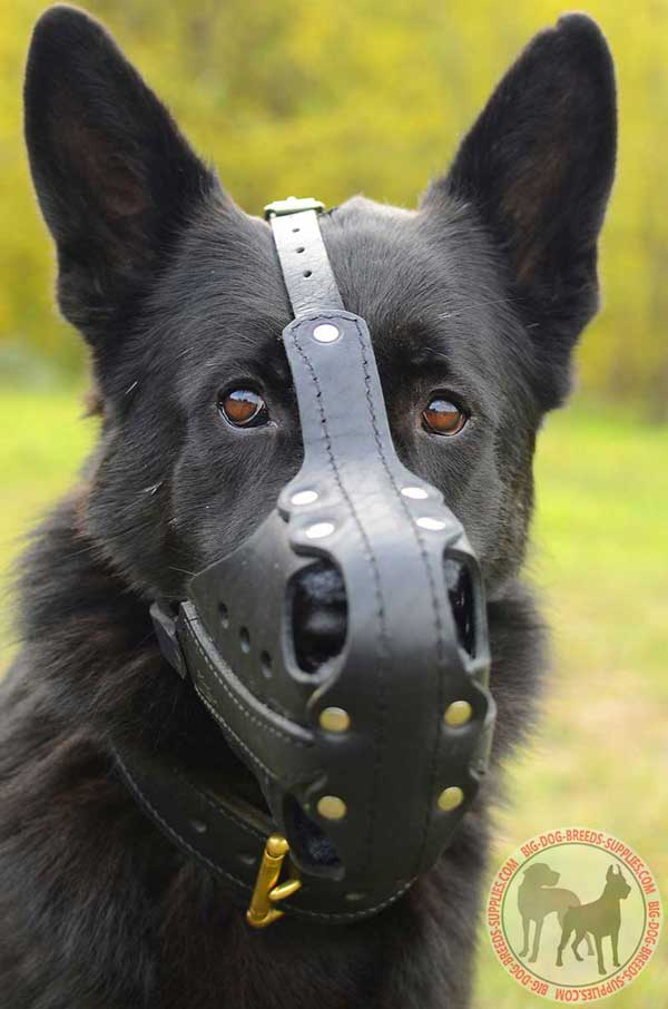 Strong German Shepherd Muzzle with Steel-Bars for Attack Training