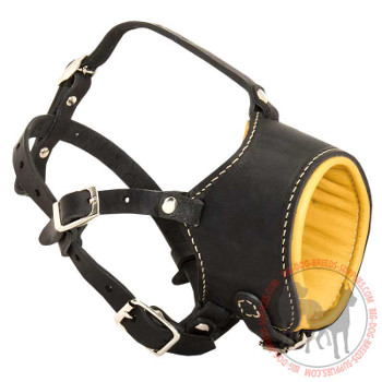 Leather Canine Muzzle for Daily Walking