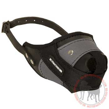 Leather nylon dog muzzle for attack work