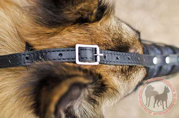 Tervuren Leather Muzzle Basket Fitted Snugly