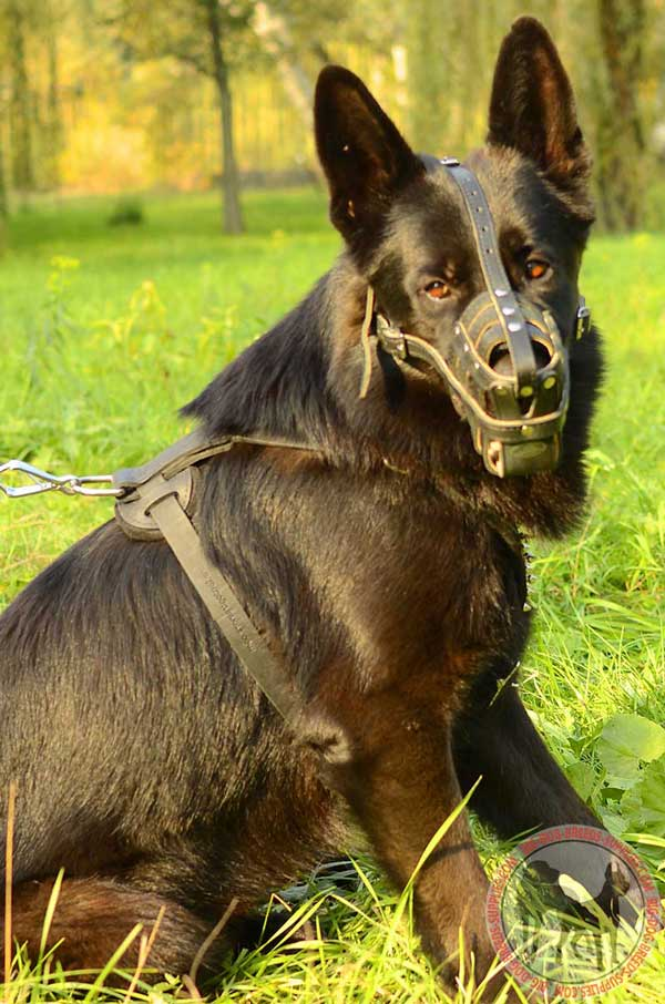 Leather Mesh Cage German Shepherd Muzzle for Walking