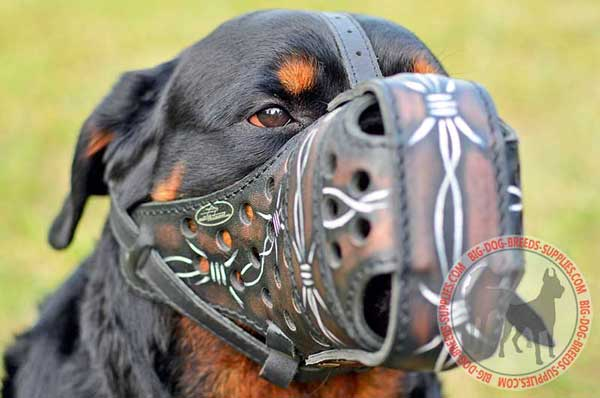 Leather Rottweiler Muzzle for Protection Training
