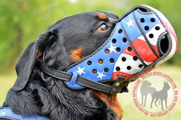 Leather Rottweiler Muzzle with Easy Adjustable Straps