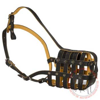 Leather basket muzzle for dog walking
