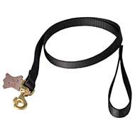 Heavy Duty Dog Leash with Swivel Snap Hook